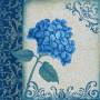 Debbie-Cole-Blue-Hydrangea